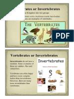 vertebrates and invertebrates.docx