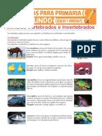 Animales Vertebrados e Invertebrados Para Segundo de Primaria (1)