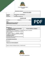 plan de clase ORTO II-2019.docx