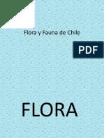 Flora y Fauna de Chile zona central.pptx