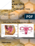 Human Reproductive System Week 1 Day 1-2