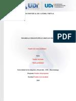 Plantilla de Trabajo Actividad Individual Catedra Virtual_2019-2
