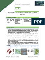 Sesion Protozoario Ofelia