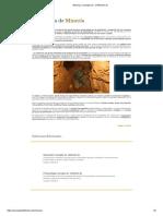 Minería _ Concepto de - Definición De