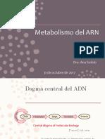 Metabolismo del ARN