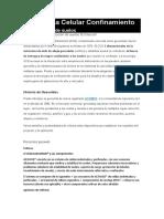GEOCELDAS 1.docx