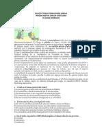 ejercicios de comprension lectira con respuestas.docx