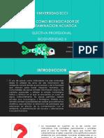 Biodiversidad Exposicion