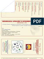 Micro Brochure