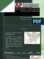 EVALUACION DE PELVIS Y CADERA-power point.pptx