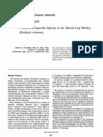 Bancroft i Filariasis