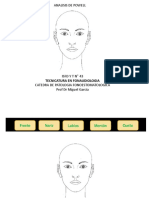 ANALISIS FACIAL 2.ppt