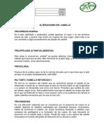 ALTERACIONES DEL CABELLO.docx