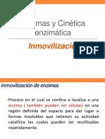 Enzimas y Cinética enzimática-Inmovilizacion.pdf