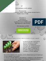 Gerencia Estratégica y Medio Ambiente