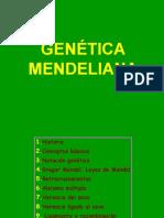 t20 Genetica Mend