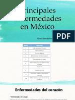 Principales Enfermedades en México