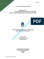 41385.pdf