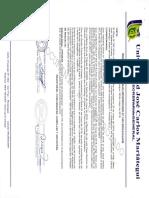Vi-gi-003 Guia de Lineas de Investigación Vr 05