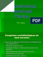Caracteristicas Gerais Das Plantas