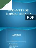 PARAMETROS FORMACIONALES