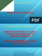 RECURSO APELACIÓN NSJP 2019.pptx