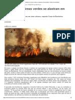Incêndios em áreas verdes se alastram em Uberlândia - Diário de Uberlândia.pdf