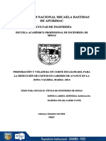 T_0266.pdf