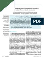 Pseudomonas Aeruginosa PDF