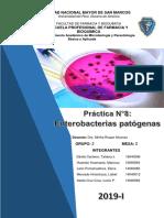 Practica 8- Ent. Patogenas -INTRODUCCION-OBJETIVOS-MATERIALES- RESULTADOS..docx