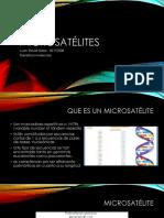 Microsatélites.pptx
