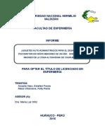 2.-INFORME DE INVESTIGACION DE JUGUETES AUTOADMINISTRADOS 2017 fresia y kelly.doc