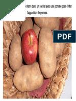22. Placez Les Pommes de Terre Dans Un Sachet Avec Une Pomme