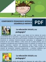 Planeacion Pedagogica -Modalidad Cdi 2018 -Especifica