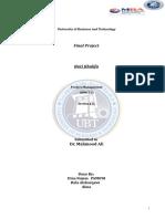 Final_Project_Burj_Khalifa_Project_Manag (1).docx