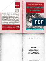 Brujas y curanderas.pdf