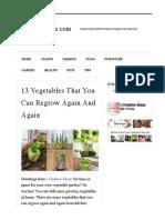 13 Vegetables That You Can Regrow Again and Again _ ICreativeIdeas.com