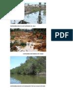 Contaminacion de Areas Naturales