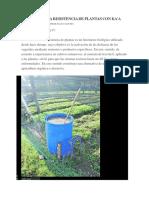INDUCCIÓN A LA RESISTENCIA DE PLANTAS CON KA'A HE'Ê