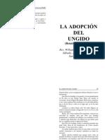 20 Junio 09 La Adopcion Del Ungido de Dios_San Pablo Brasil