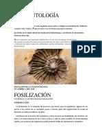 PALEONTOLOGÍA.docx123.docx