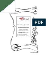 Historia de La Educacion UAP