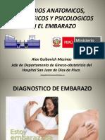 1.Cambios Anatomicos, Fisiologicos en El