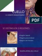 CUELLO 1.pptx