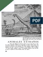 31 Animales Extraños de Tiempos Remotos