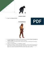 Caracteristicas Sapiens-Homo