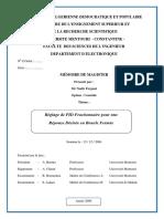 20141218113753-FERGANI NADIR Memoire Magister