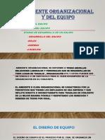 Ambiente Organizacional y Del Equipo DOMINGO