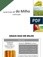 Aula - Cultura Do Milho (Cont.)