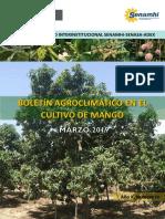 Boletín agroclimático en el cultivo de mango